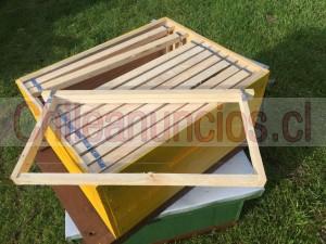 abejas, apiarios,cámaras de crías,alzas,marcos,pisos y techos nuevos